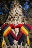 Autumn Hands on a Tree Trunk Royalty Free Stock Photo
