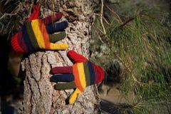 Autumn Hands on a Tree Trunk Stock Photos