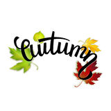 Autumn handwritten text, colorful leaves and lettering Royalty Free Stock Photo