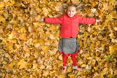 Autumn happiness Royalty Free Stock Image