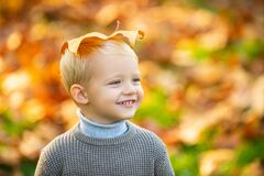 Free Autumn Happy Child Have Fun And Playing With Fallen Golden Leaves. Cute Little Boy Enjoy Autumn Nature Has Happy Face Royalty Free Stock Photo - 191237415