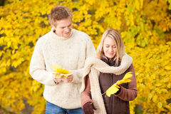 Autumn happy couple holding leaves in park Stock Photography