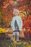 Autumn happy little girl has fun playing with fallen golden leaves Royalty Free Stock Images