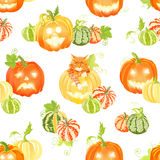 Autumn happy pumpkins and cat seamless vector print Royalty Free Stock Photo