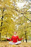 Autumn harmony Royalty Free Stock Images
