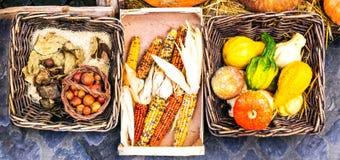 Autumn harves. Market still life from vegetables Stock Photos