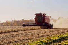 Autumn Harvest arkivbild