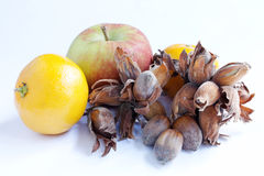 Autumn Harvest. Apple, satsuma and cobb nuts isolated over a white background Royalty Free Stock Photography
