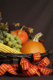 Autumn harvest Royalty Free Stock Images