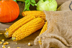 Autumn harvest. Background with fruit and vegetables Royalty Free Stock Image