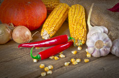 Autumn harvest. Background with fruit and vegetables Stock Photography