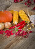 Autumn harvest. Background with fruit and vegetables Stock Photos
