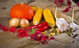 Autumn harvest. Background with fruit and vegetables Royalty Free Stock Photos