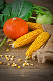 Autumn harvest. Background with fruit and vegetables Stock Images