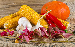Autumn harvest. Background with fruit and vegetables Stock Image