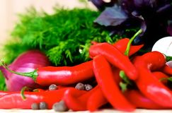 Autumn harvest. Fall endows us harvest of vegetables and spices. Bright and spicy chili peppers, and ask for a table. The aroma of sweet peppers, stimulates the Royalty Free Stock Photo