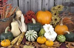 Free Autumn Harvest Stock Images - 27203824