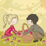 Autumn harvest. Girl and Boy picking fresh mushrooms in the woods Royalty Free Stock Photos