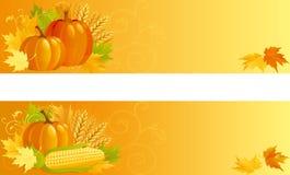 Autumn Harvest Photos stock
