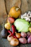 Autumn Harvest Royalty-vrije Stock Afbeeldingen