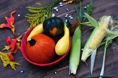 Autumn Harvest Photos libres de droits