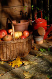 Autumn Harvest. Royalty Free Stock Photos