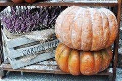 Autumn Harvest Fotografía de archivo
