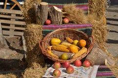 Autumn Harvest Foto de archivo