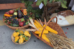 Autumn Harvest Fotografia Stock