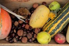 Autumn Harvest Immagine Stock Libera da Diritti