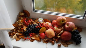 Autumn Harvest Fotografie Stock