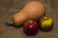 Autumn harvest, apples and pumpkin Royalty Free Stock Photos