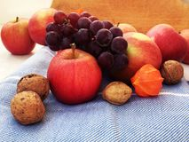 Autumn harvest, apples, walnuts, grapes, fizalis on a blue towel royalty free stock photography