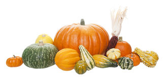 Autumn Harvest Arrangement Royalty Free Stock Photos