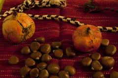Autumn harvest arrangement. Pomegranate chestnuts on retro background Stock Image
