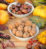 Autumn harvest - Autumn fruitage Royalty Free Stock Photo