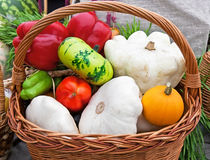 Autumn harvest in basket Stock Image