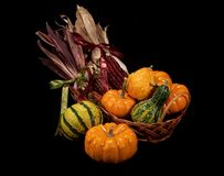 Autumn Harvest Basket Royalty Free Stock Photos