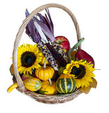 Autumn Harvest Basket Immagine Stock