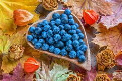 Autumn harvest of blue thorns on a wooden plate in the shape of a heart. Autumn background stock image
