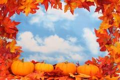 Autumn Harvest Border Stock Photo