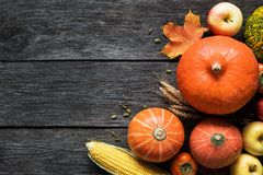 Autumn harvest border with pumpkins, apples, corn and fallen leaves Stock Photo