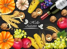 Autumn harvest card Vector realistic. Pumpkin, corn, grapes, wine, walnuts, grapes. Detailed 3d design. dark backgrounds. Autumn harvest card Vector realistic stock illustration
