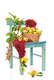 Autumn Harvest Chair Royalty Free Stock Image