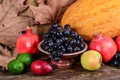 Autumn harvest, colorful fruits Royalty Free Stock Images