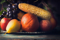 Autumn harvest concept. Fall fruits and vegetables on dark rustic kitchen table stock photo