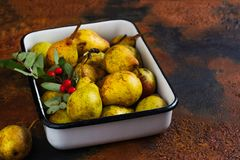 Autumn harvest concept. Fall ripe pears on grunge background Stock Photography