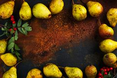 Autumn harvest concept. Fall ripe pears on grunge background Stock Image