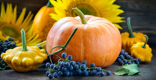 Autumn harvest. Concept, pumpkin squashes and grapes on a dark background Royalty Free Stock Photo