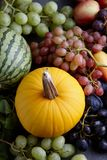 Autumn concept with seasonal fruits and vegetables Royalty Free Stock Images